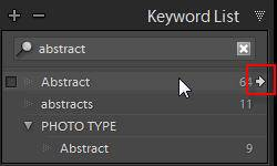 Lightroom Duplicate Keywords Filter Shortcut