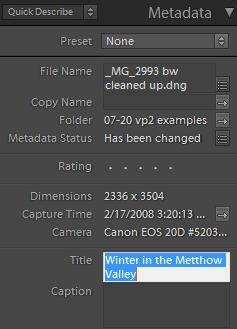 entering a title in the metadata panel