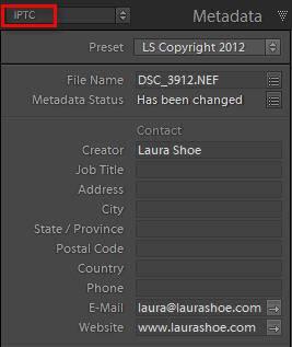 lightroom-metadata-panel-copyright