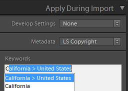 Lightroom keyword hierarchy assign on import