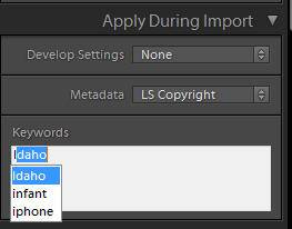 Lightroom keyword hierarchy import select