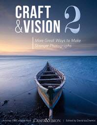 craft and vision free e-book