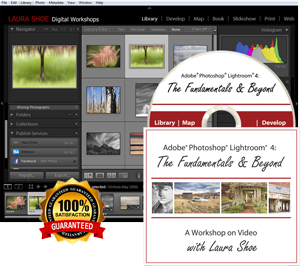 Lightroom 4 Fundamentals and Beyond Video Tutorials | Laura Shoe's