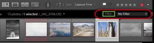 Lightroom filmstrip filter