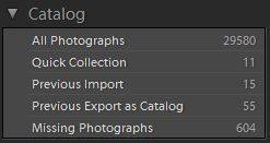 Lightroom Catalog Panel