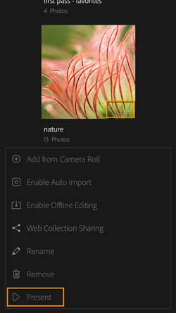 Lightroom Mobile Presentation View