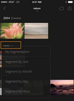 Lightroom Mobile Segmentation Options