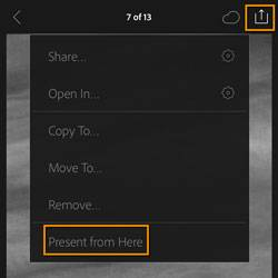 Lightroom Mobile Presentation Mode 2