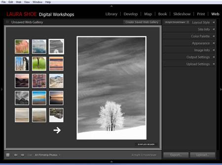 Designing and uploading a web gallery in Lightroom's Web module.