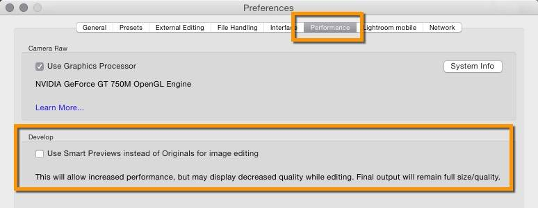 Lightroom Smart Preview Editing Preference
