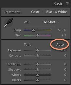 Lightroom Classic Auto Function in the Develop Module
