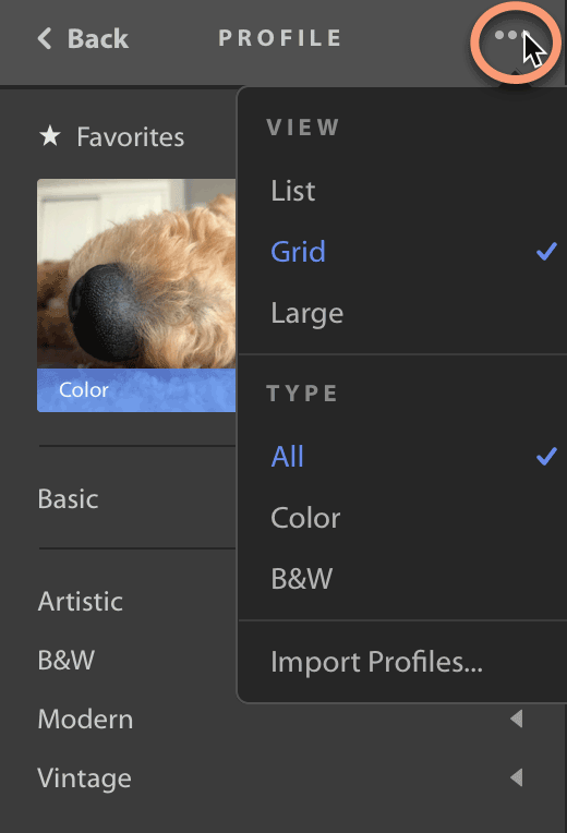 Change preview style of profiles in Lightroom CC
