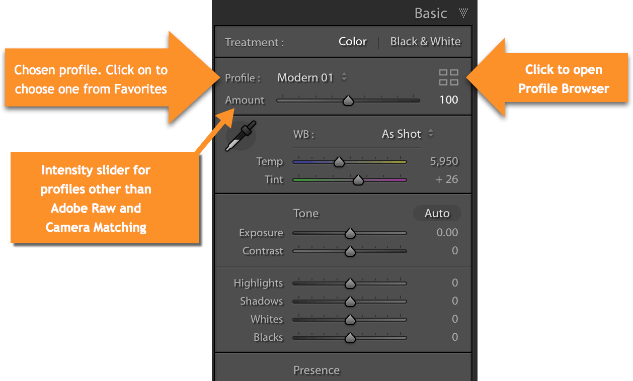 Lightroom Classic Profile Selection