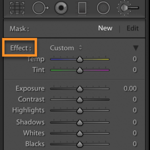 Reset all sliders in Lightroom's adjustment brush and other local adjustment tools.
