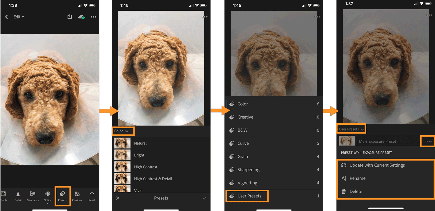 Lightroom CC mobile: apply and manage presets