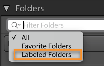 lightroom classic: filter folders on color label