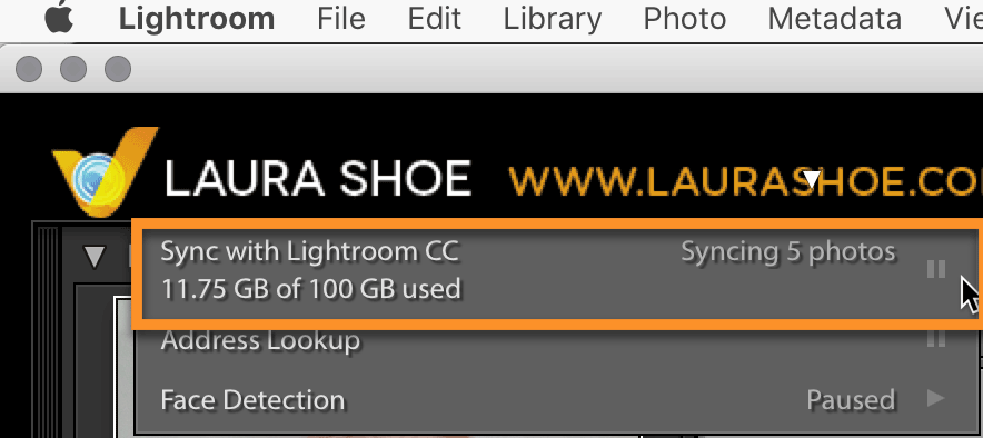 Turn Syncing On/Off in Lightroom Classic