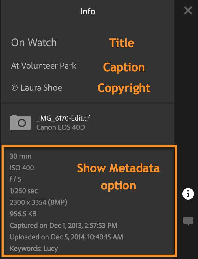 Sharing an Album/Collection from Lightroom: Show Metadata Option