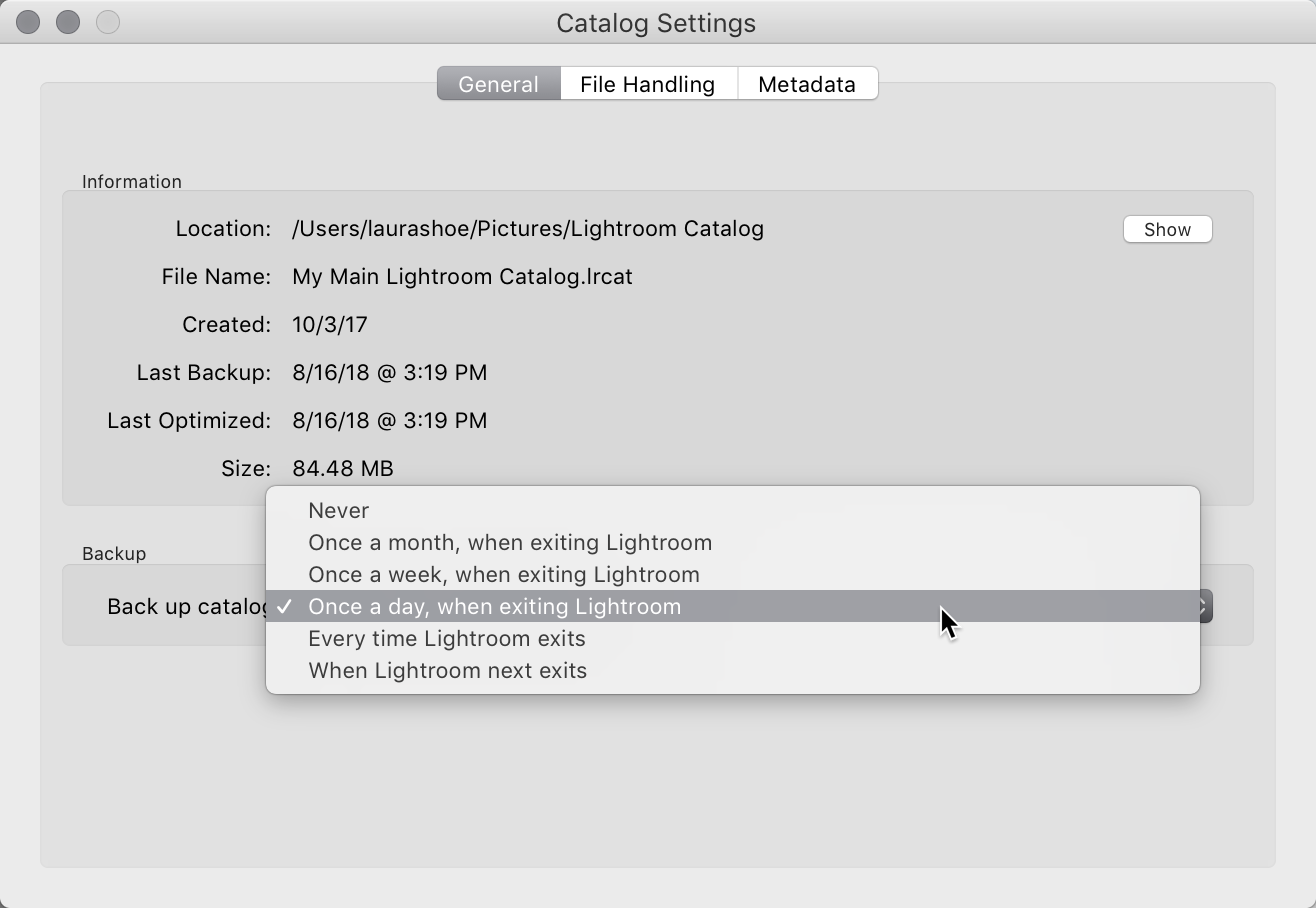 Set how often Lightroom prompts you to back up your catalog