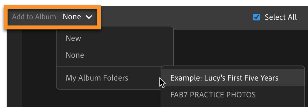 Lightroom CC: Add Photos Add to Album Hierarchy Display