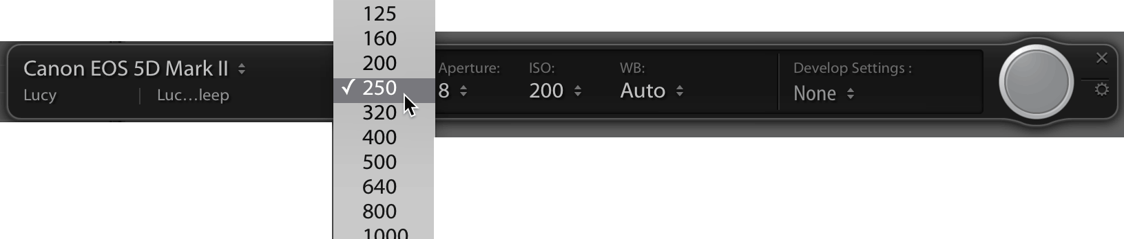Lightroom Classic CC: Set tethered exposure and camera