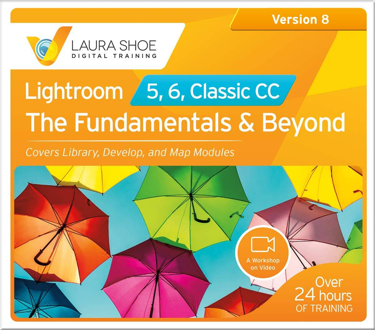 Learn Lightroom with Laura Shoe