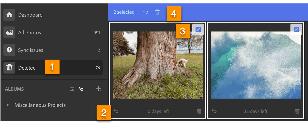 How to Recover Photo Files Deleted from Lightroom