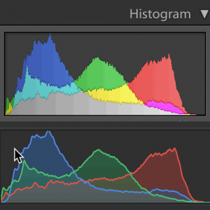 Learn what the histogram is and how to use it in-camera and in Lightroom